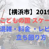 【横浜市】2019年 こどもの国 スケート場 混雑・料金 ・レビュー ・立ち回り方