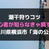 潮干狩りコツ【初心者が知らなきゃ損する】神奈川県横浜市「海の公園」